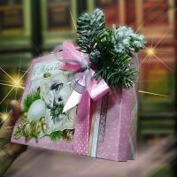 Подарочный набор С новым Годом_1